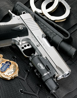The Stainless Pro TLE/RL II .45 ACP is ideal for law enforcement or home defense. Standard features include night sights and frontstrap checkering.